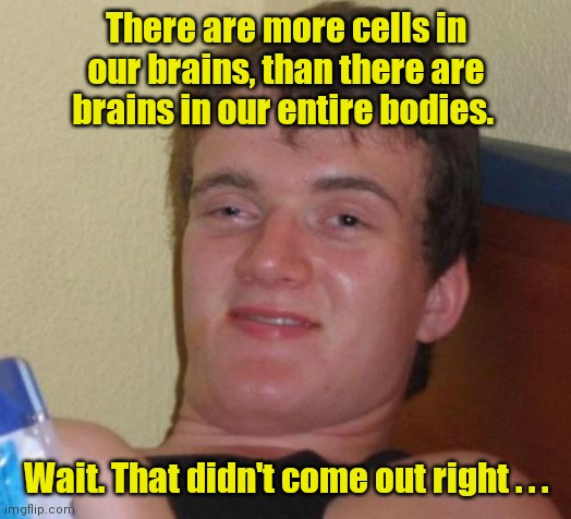 My head hurts. |  There are more cells in our brains, than there are brains in our entire bodies. Wait. That didn't come out right . . . | image tagged in memes,10 guy,funny | made w/ Imgflip meme maker