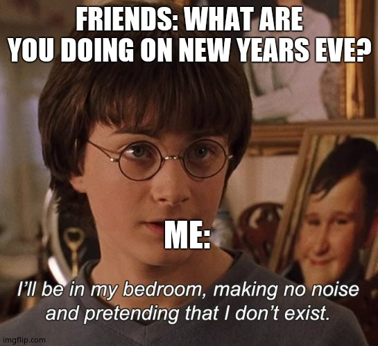 Harry Potter |  FRIENDS: WHAT ARE YOU DOING ON NEW YEARS EVE? ME: | image tagged in harry potter | made w/ Imgflip meme maker