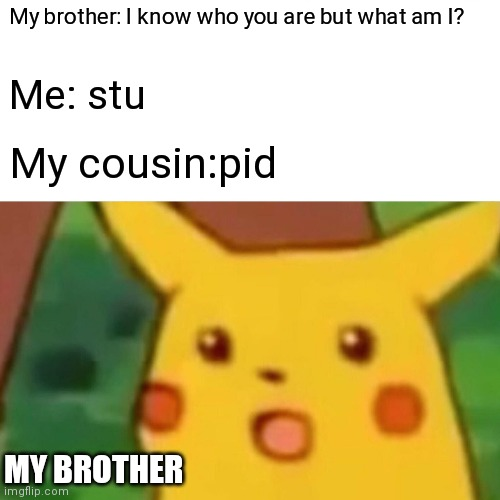 Fun times |  My brother: I know who you are but what am I? Me: stu; My cousin:pid; MY BROTHER | image tagged in memes,surprised pikachu | made w/ Imgflip meme maker