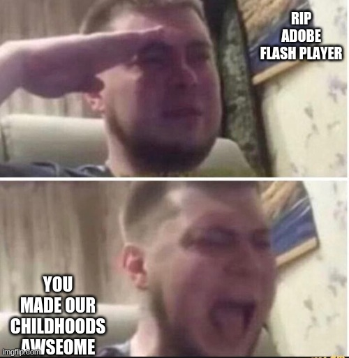 WHYYYYYYYYYYYY |  RIP ADOBE FLASH PLAYER; YOU MADE OUR CHILDHOODS AWSEOME | image tagged in crying salute | made w/ Imgflip meme maker