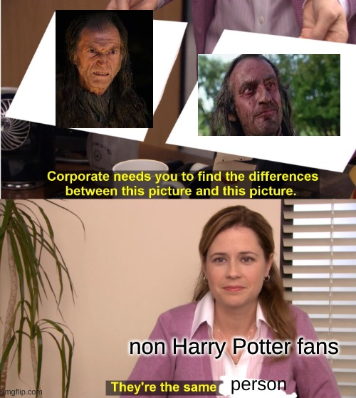 They're The Same Picture |  non Harry Potter fans; person | image tagged in memes,they're the same picture | made w/ Imgflip meme maker