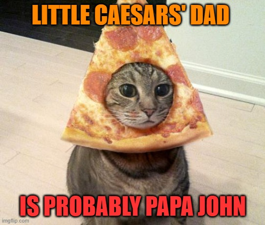 This one gets me. |  LITTLE CAESARS' DAD; IS PROBABLY PAPA JOHN | image tagged in pizza cat,little casers,papa john,lol | made w/ Imgflip meme maker