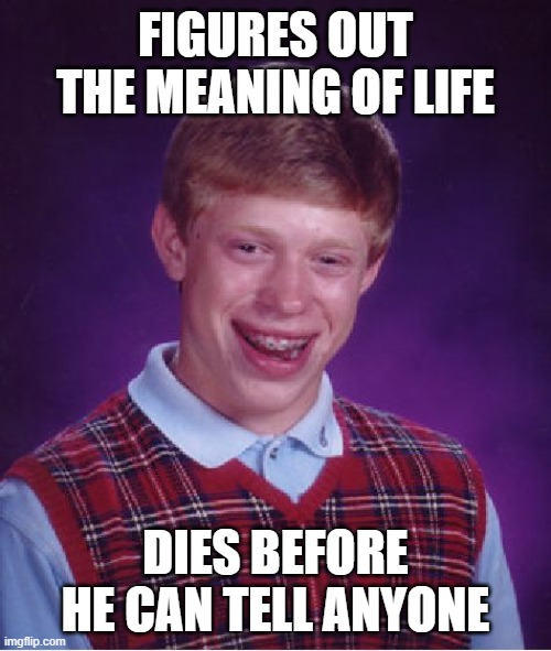 Life is nothing but revelations |  FIGURES OUT THE MEANING OF LIFE; DIES BEFORE HE CAN TELL ANYONE | image tagged in memes,bad luck brian | made w/ Imgflip meme maker