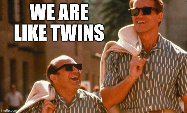 twins | WE ARE LIKE TWINS | image tagged in twins | made w/ Imgflip meme maker