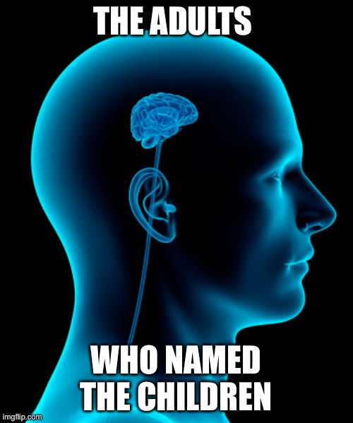 small brain | THE ADULTS WHO NAMED THE CHILDREN | image tagged in small brain | made w/ Imgflip meme maker