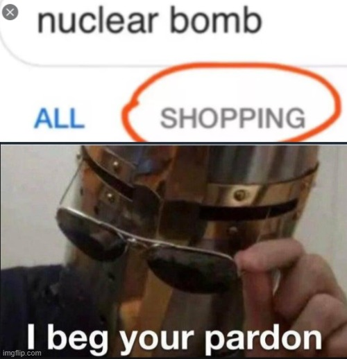 Get in the car, we're going shopping | image tagged in i beg your pardon | made w/ Imgflip meme maker