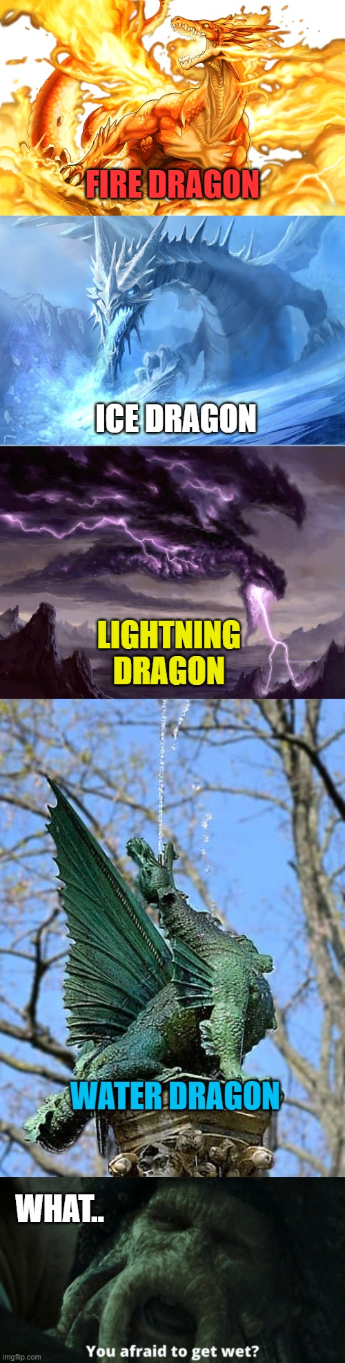 THE WATER DRAGON CAN GIVE YOU A SHOWER |  FIRE DRAGON; ICE DRAGON; LIGHTNING DRAGON; WATER DRAGON; WHAT.. | image tagged in dragon,dragons | made w/ Imgflip meme maker