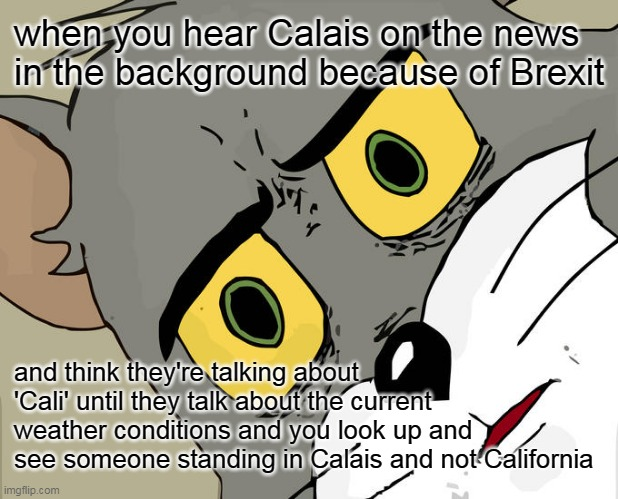 The Penny Drops |  when you hear Calais on the news in the background because of Brexit; and think they're talking about 'Cali' until they talk about the current weather conditions and you look up and see someone standing in Calais and not California | image tagged in memes,brexit,cali,calais,uk,news | made w/ Imgflip meme maker