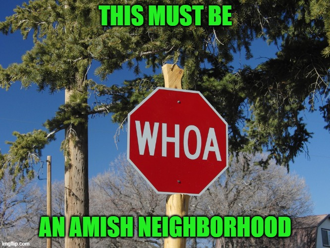 THIS MUST BE; AN AMISH NEIGHBORHOOD | image tagged in funny signs,memes,amish,funny,signs | made w/ Imgflip meme maker