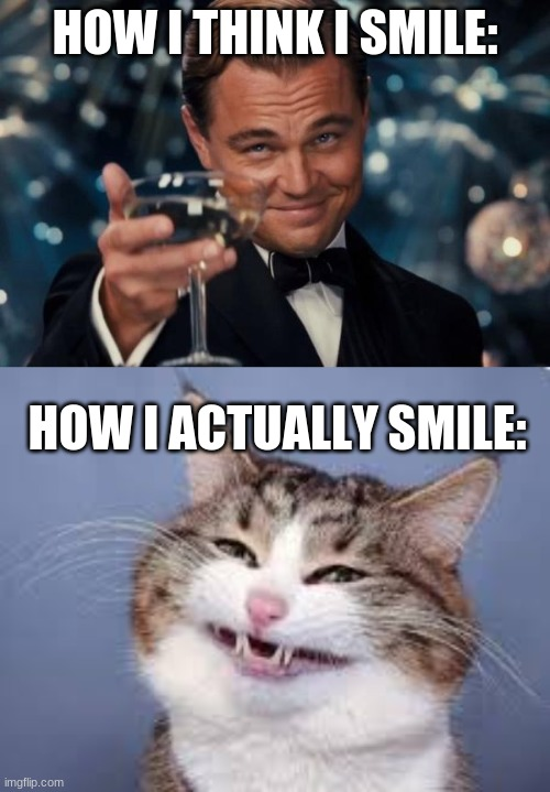Why I don't smile |  HOW I THINK I SMILE:; HOW I ACTUALLY SMILE: | image tagged in memes,leonardo dicaprio cheers,funny memes,fun stream,hot memes,smiling cat | made w/ Imgflip meme maker