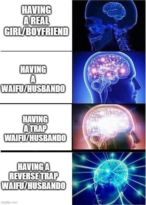 reverse trap waifu |  HAVING A REAL GIRL/BOYFRIEND; HAVING A WAIFU/HUSBANDO; HAVING A TRAP WAIFU/HUSBANDO; HAVING A REVERSE TRAP WAIFU/HUSBANDO | image tagged in stages of evolution | made w/ Imgflip meme maker