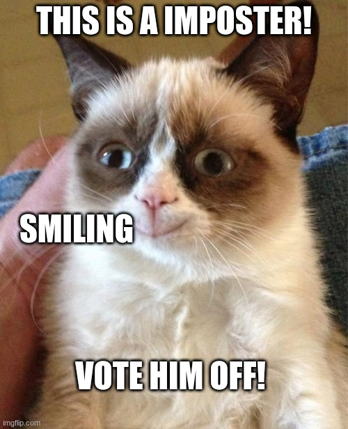 Grumpy Cat Happy |  THIS IS A IMPOSTER! SMILING; VOTE HIM OFF! | image tagged in memes,grumpy cat happy,grumpy cat | made w/ Imgflip meme maker