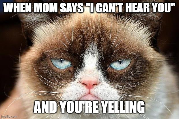 "Grumpy Cat Not Amused |  WHEN MOM SAYS ""I CAN'T HEAR YOU""; AND YOU'RE YELLING 