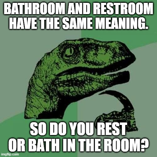 this confuses me a lot of times |  BATHROOM AND RESTROOM HAVE THE SAME MEANING. SO DO YOU REST OR BATH IN THE ROOM? | image tagged in memes,philosoraptor | made w/ Imgflip meme maker