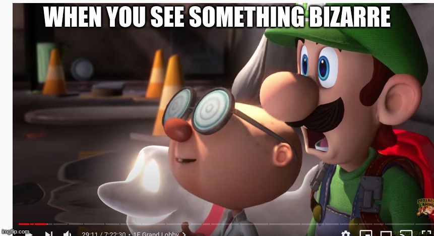 lol |  WHEN YOU SEE SOMETHING BIZARRE | image tagged in luigi | made w/ Imgflip meme maker