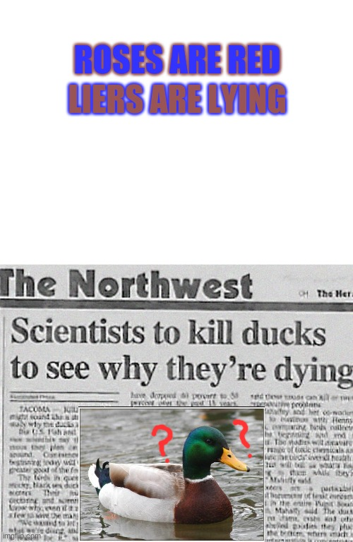 Oof ducks |  ROSES ARE RED; LIERS ARE LYING | image tagged in blank white template,roses are red,ducks | made w/ Imgflip meme maker