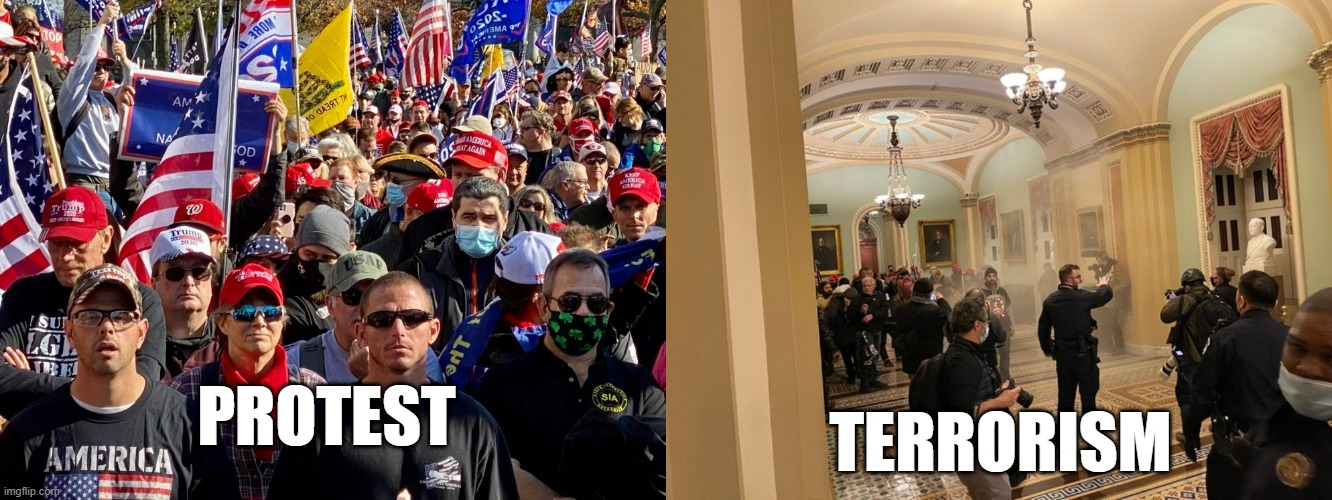 Context Matters |  PROTEST; TERRORISM | image tagged in maga,terrorism,attempted coup | made w/ Imgflip meme maker
