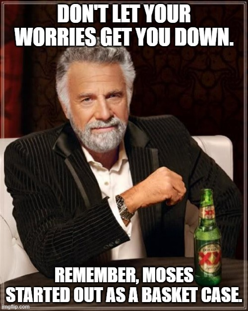 The Most Interesting Man In The World Meme |  DON'T LET YOUR WORRIES GET YOU DOWN. REMEMBER, MOSES STARTED OUT AS A BASKET CASE. | image tagged in memes,the most interesting man in the world,bad jokes,puns,moses,basket | made w/ Imgflip meme maker