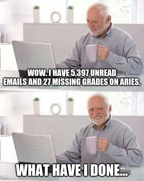 h i d e t h e p a i n h a r o l d |  WOW. I HAVE 5,397 UNREAD EMAILS AND 27 MISSING GRADES ON ARIES. WHAT HAVE I DONE... | image tagged in memes,hide the pain harold,oh no,online class,funny,cool | made w/ Imgflip meme maker