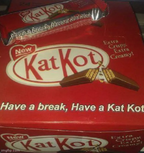 BrEaK mE oFf A pIeCe oF tHaT kAt kOt BaR! | image tagged in memes | made w/ Imgflip meme maker