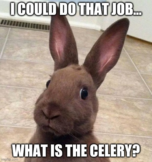 Rabbit Is Ready To Work |  I COULD DO THAT JOB... WHAT IS THE CELERY? | image tagged in really rabbit,rabbit,job,celery,work,cute animal | made w/ Imgflip meme maker