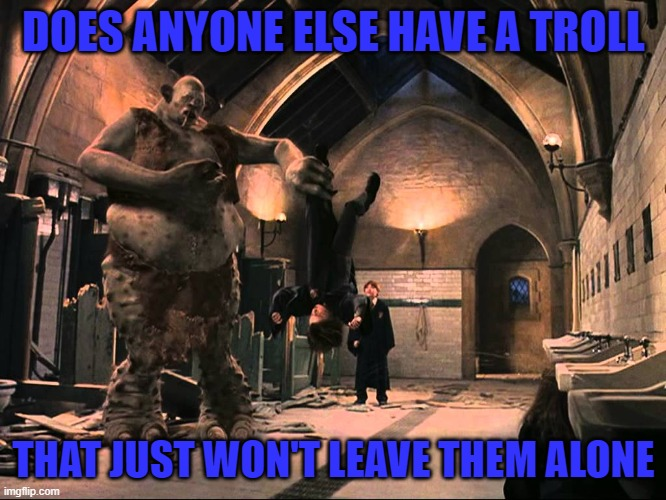 If you do, then welcome to my world! |  DOES ANYONE ELSE HAVE A TROLL; THAT JUST WON'T LEAVE THEM ALONE | image tagged in harry potter troll,memes,trolls,imgflip,funny | made w/ Imgflip meme maker