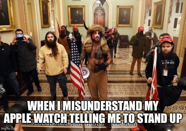 Raiders of The Lost Election |  WHEN I MISUNDERSTAND MY APPLE WATCH TELLING ME TO STAND UP | image tagged in capital,stop the count,congress,whitepeople | made w/ Imgflip meme maker
