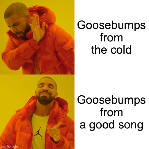 Drake Hotline Bling Meme |  Goosebumps from the cold; Goosebumps from a good song | image tagged in memes,drake hotline bling | made w/ Imgflip meme maker