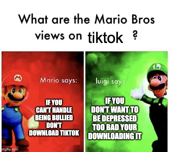 tiktok is a bully website >:C |  tiktok; IF YOU CAN'T HANDLE BEING BULLIED DON'T DOWNLOAD TIKTOK; IF YOU DON'T WANT TO BE DEPRESSED TOO BAD YOUR DOWNLOADING IT | image tagged in mario bros views | made w/ Imgflip meme maker