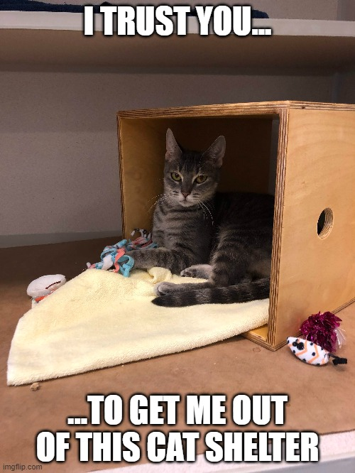 """I trust you..."" 
