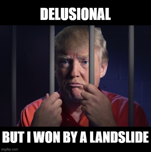Enough is Enough! Put this Criminal Psychopath in Jail! |  DELUSIONAL; BUT I WON BY A LANDSLIDE | image tagged in delusional,liar,criminal,traitor,impeach him again,lock him up | made w/ Imgflip meme maker