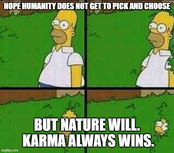 Homer bush | NOPE HUMANITY DOES NOT GET TO PICK AND CHOOSE BUT NATURE WILL.  KARMA ALWAYS WINS. | image tagged in homer bush | made w/ Imgflip meme maker