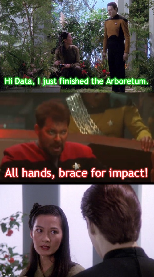 Oh $#!+ |  Hi Data, I just finished the Arboretum. All hands, brace for impact! | image tagged in star trek the next generation,brace yourselves,star trek data,star trek tng,riker,star trek | made w/ Imgflip meme maker
