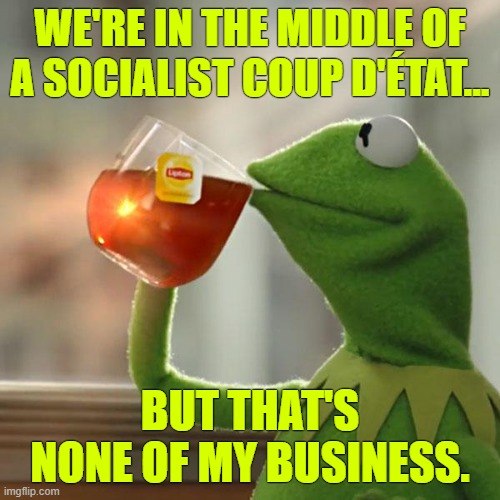 QUISLING |  WE'RE IN THE MIDDLE OF A SOCIALIST COUP D'ÉTAT... BUT THAT'S NONE OF MY BUSINESS. | image tagged in memes,but that's none of my business,kermit the frog,quisling,coup d etat,socialist take over | made w/ Imgflip meme maker