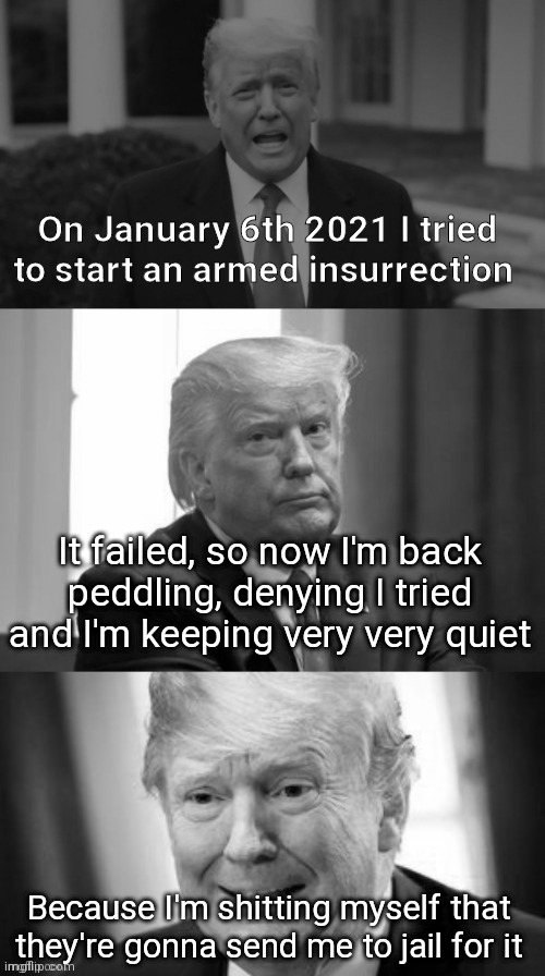 Oops I've fcuked up! |  On January 6th 2021 I tried to start an armed insurrection; It failed, so now I'm back peddling, denying I tried and I'm keeping very very quiet; Because I'm shitting myself that they're gonna send me to jail for it | image tagged in trump,donald trump,revolution,special kind of stupid,regrets,scared | made w/ Imgflip meme maker