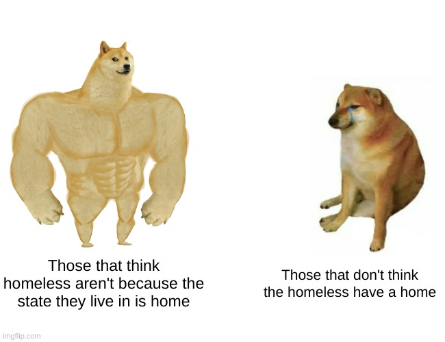 Are you reading this |  Those that think homeless aren't because the state they live in is home; Those that don't think the homeless have a home | image tagged in memes,buff doge vs cheems | made w/ Imgflip meme maker