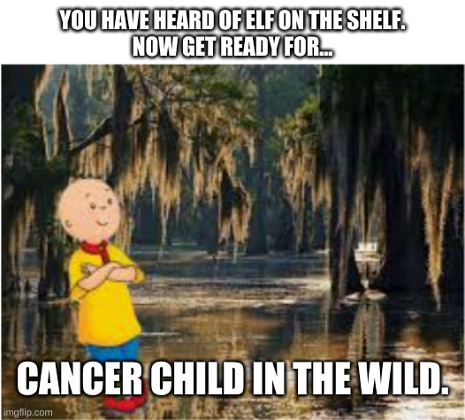 YOU HAVE HEARD OF ELF ON THE SHELF. NOW GET READY FOR... CANCER CHILD IN THE WILD. | image tagged in white background | made w/ Imgflip meme maker