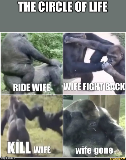 Wife gone |  THE CIRCLE OF LIFE | image tagged in sad,monke,wife,gone | made w/ Imgflip meme maker