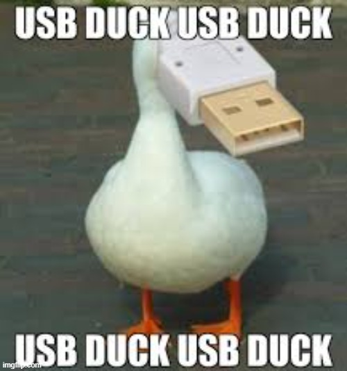 usb | image tagged in memes,duck | made w/ Imgflip meme maker
