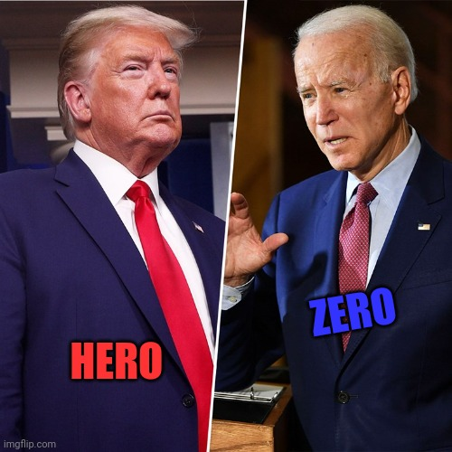 Trump Biden |  ZERO; HERO | image tagged in trump biden | made w/ Imgflip meme maker