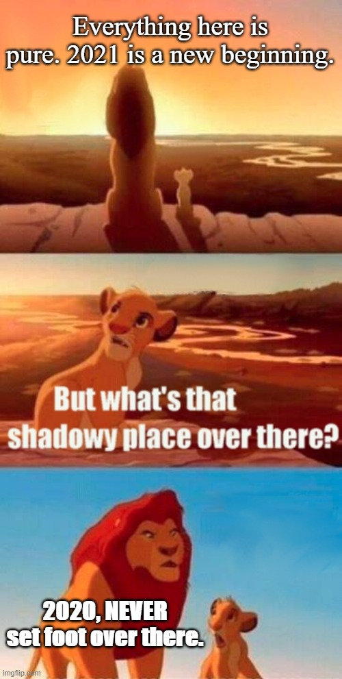 2020. |  Everything here is pure. 2021 is a new beginning. 2020, NEVER set foot over there. | image tagged in memes,simba shadowy place | made w/ Imgflip meme maker