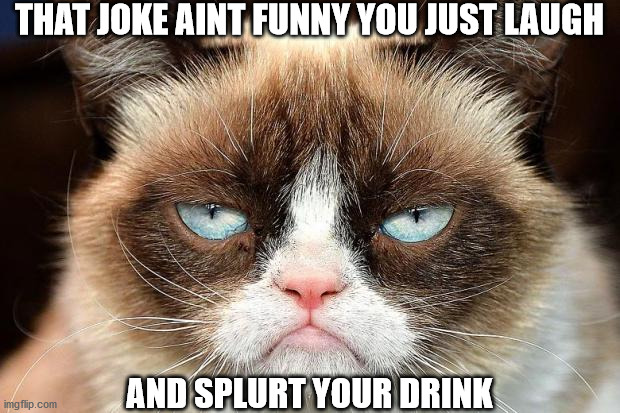 Grumpy Cat Not Amused |  THAT JOKE AINT FUNNY YOU JUST LAUGH; AND SPLURT YOUR DRINK | image tagged in memes,grumpy cat not amused,grumpy cat | made w/ Imgflip meme maker
