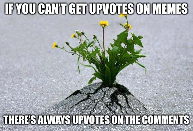 inspirational. | IF YOU CAN'T GET UPVOTES ON MEMES THERE'S ALWAYS UPVOTES ON THE COMMENTS | image tagged in inspirational | made w/ Imgflip meme maker