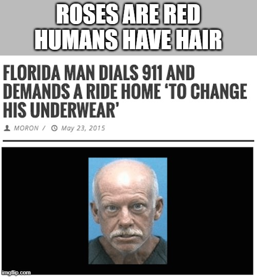 yeeeeeee |  ROSES ARE RED HUMANS HAVE HAIR | image tagged in memes | made w/ Imgflip meme maker