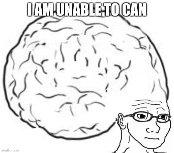 Big Brain | I AM UNABLE TO CAN | image tagged in big brain | made w/ Imgflip meme maker