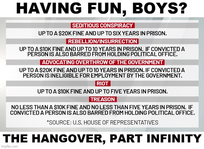 You can share a prison cell with a large black man. You'll call him Bubba, and he'll call you Sylvia. |  HAVING FUN, BOYS? THE HANGOVER, PART INFINITY | image tagged in mob,riot,crime,punishment | made w/ Imgflip meme maker