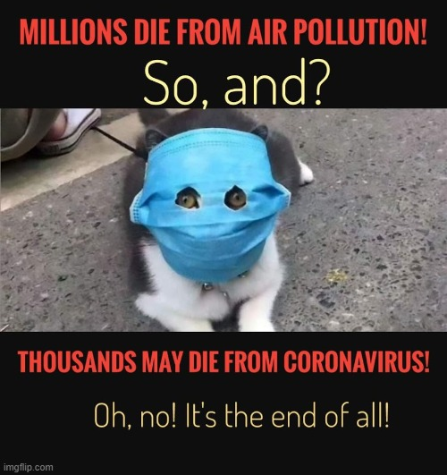 Of course dying from the coronavirus is bad. But how about people dying from air pollution? | image tagged in coronavirus,air pollution | made w/ Imgflip meme maker