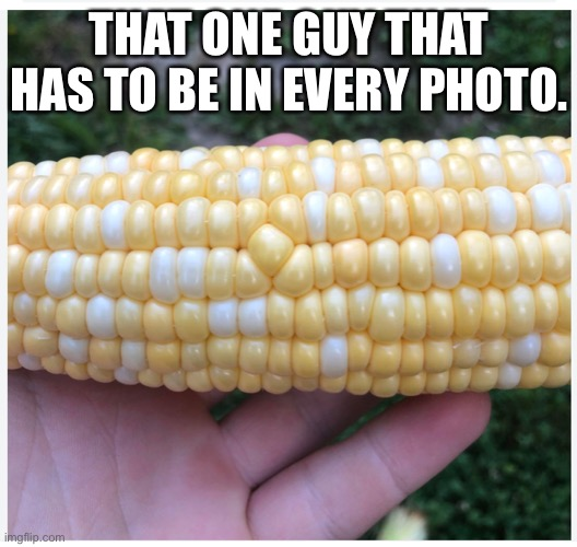 Corn cob |  THAT ONE GUY THAT HAS TO BE IN EVERY PHOTO. | image tagged in corn,photo bomb | made w/ Imgflip meme maker