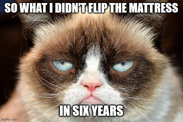 Grumpy Cat Not Amused |  SO WHAT I DIDN'T FLIP THE MATTRESS; IN SIX YEARS | image tagged in memes,grumpy cat not amused,grumpy cat | made w/ Imgflip meme maker