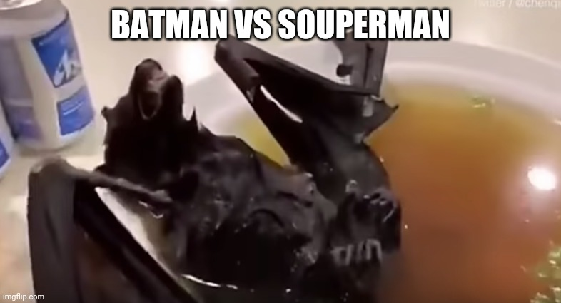 Bat soup | BATMAN VS SOUPERMAN | image tagged in bat soup | made w/ Imgflip meme maker